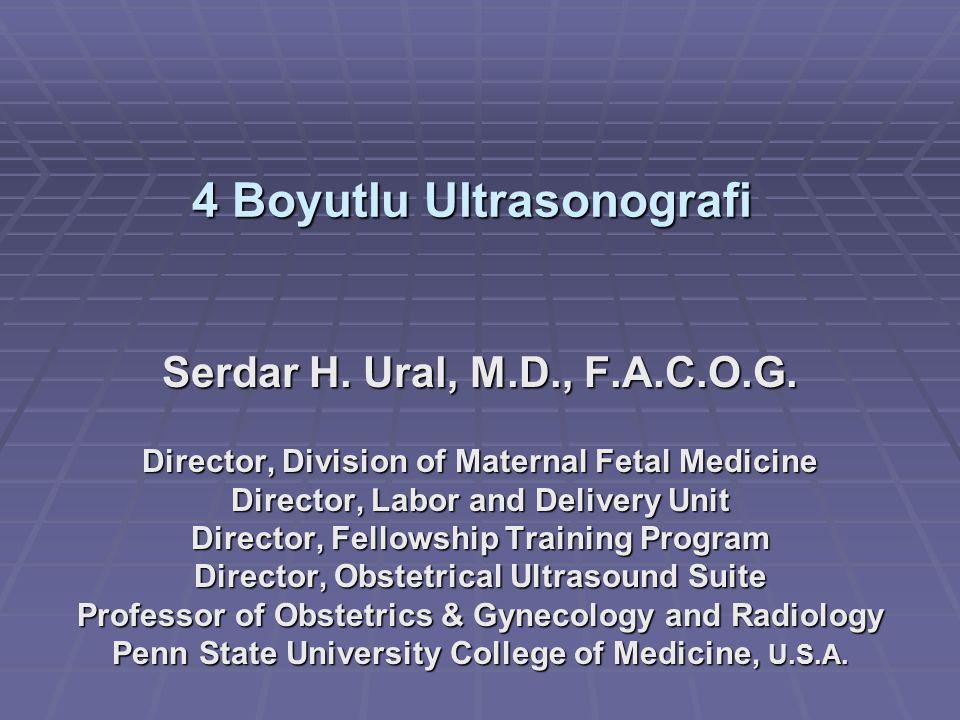 4 Boyutlu Ultrasonografi