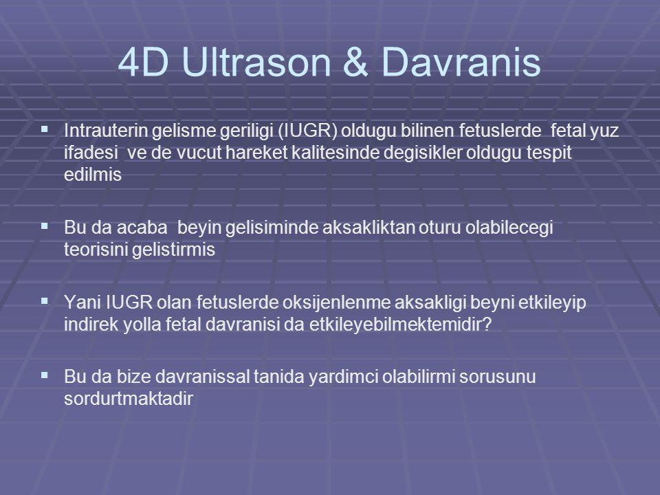 4D Ultrason & Davranis