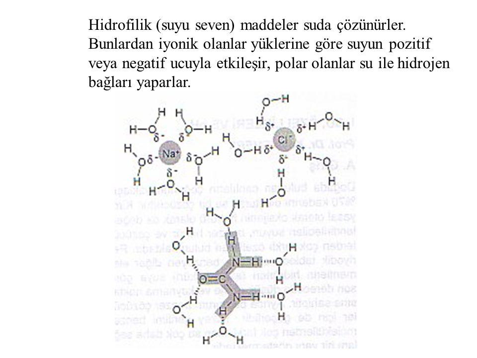 Hidrofilik (suyu seven) maddeler suda çözünürler