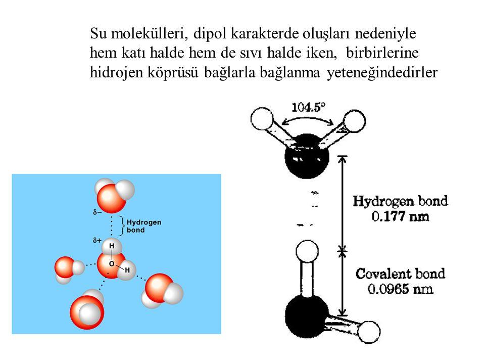 Su molekülleri, dipol karakterde oluşları nedeniyle hem katı halde hem de sıvı halde iken, birbirlerine hidrojen köprüsü bağlarla bağlanma yeteneğindedirler