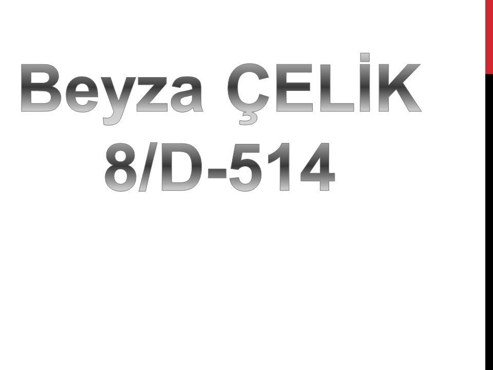 Beyza ÇELİK 8/D-514