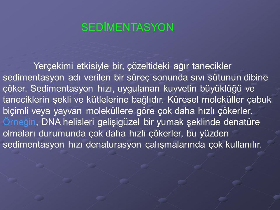 SEDİMENTASYON
