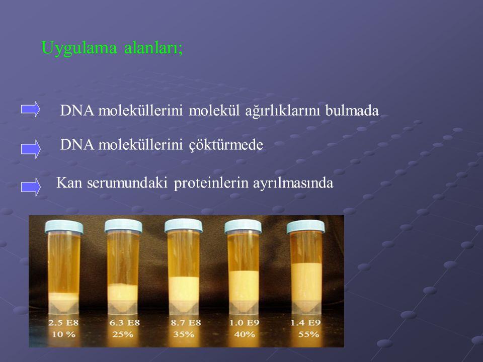 Uygulama alanları; DNA moleküllerini molekül ağırlıklarını bulmada