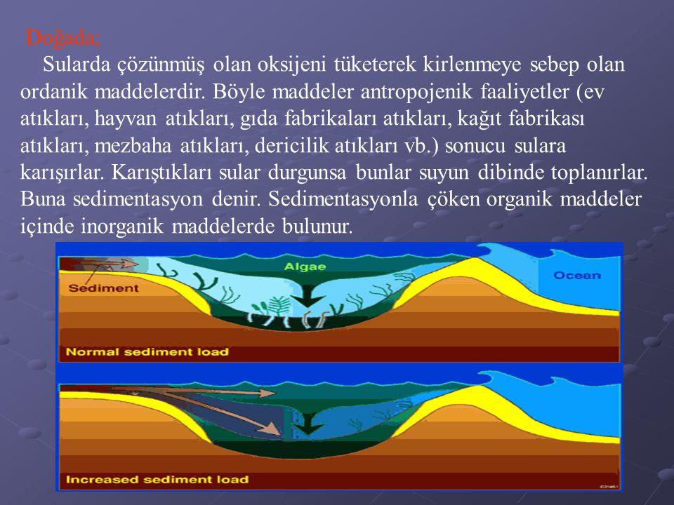 Doğada; Sularda çözünmüş olan oksijeni tüketerek kirlenmeye sebep olan ordanik maddelerdir.