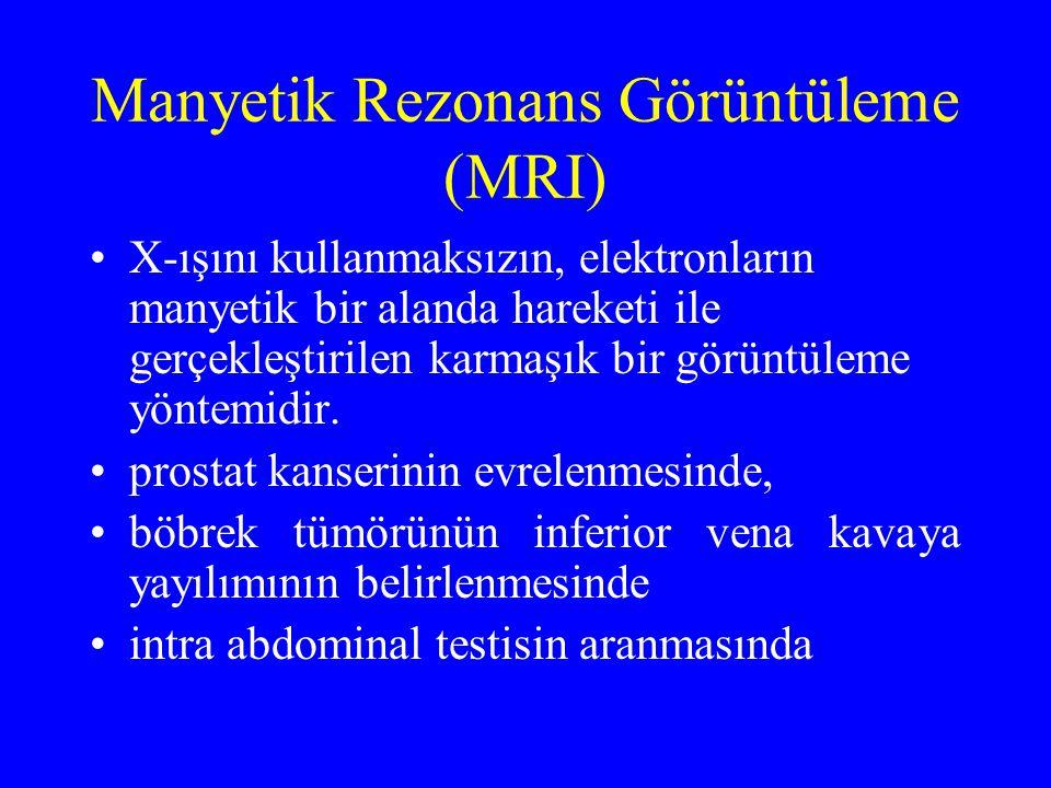 Manyetik Rezonans Görüntüleme (MRI)