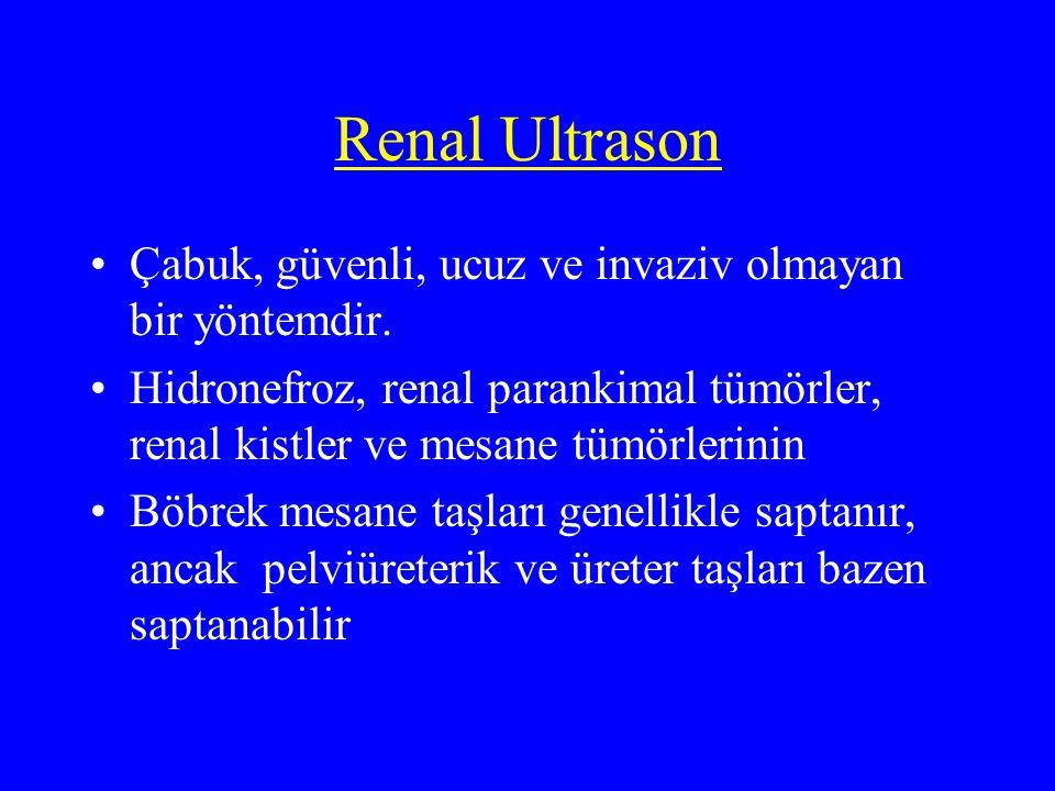 Renal Ultrason Çabuk, güvenli, ucuz ve invaziv olmayan bir yöntemdir.