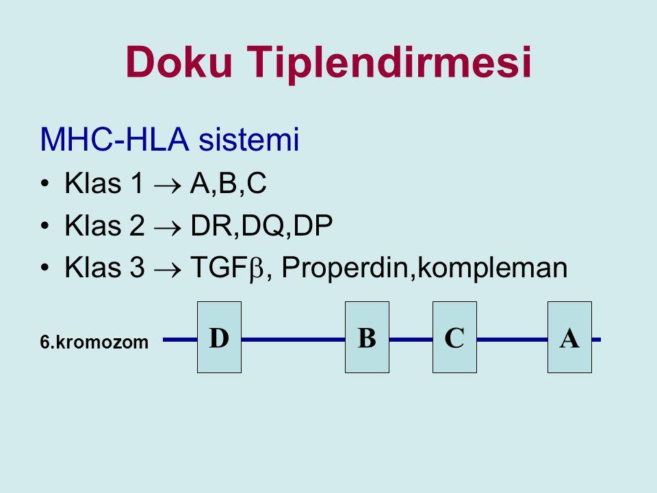 Doku Tiplendirmesi MHC-HLA sistemi Klas 1  A,B,C Klas 2  DR,DQ,DP