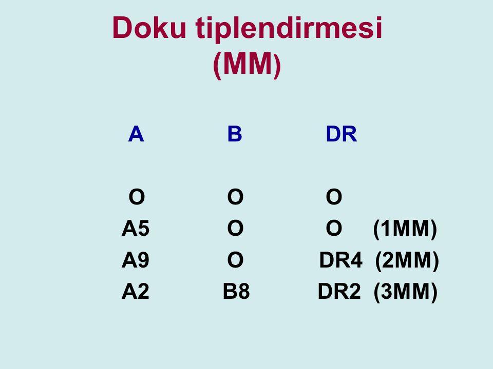 Doku tiplendirmesi (MM)