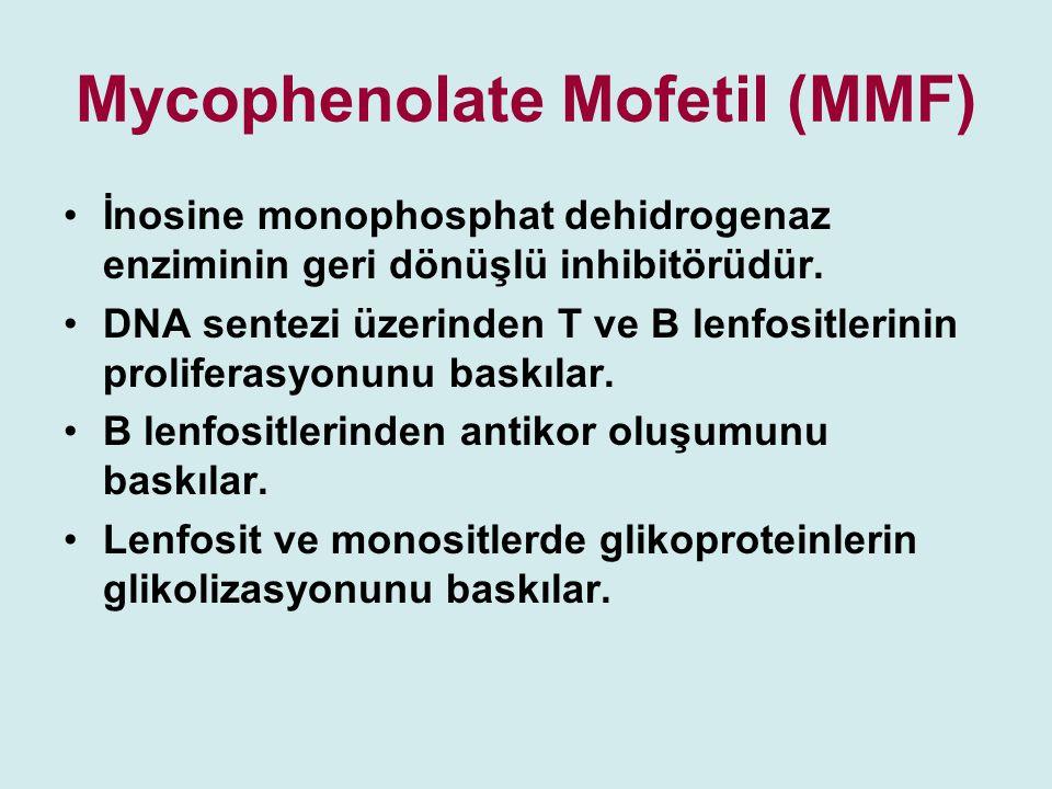 Mycophenolate Mofetil (MMF)