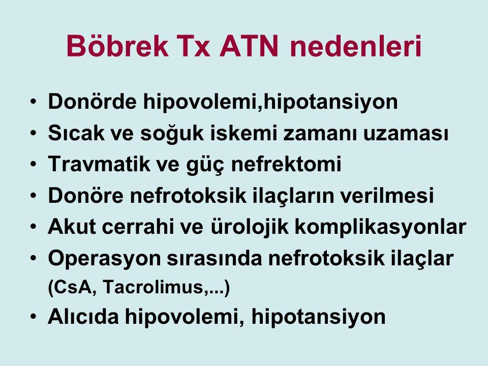 Böbrek Tx ATN nedenleri