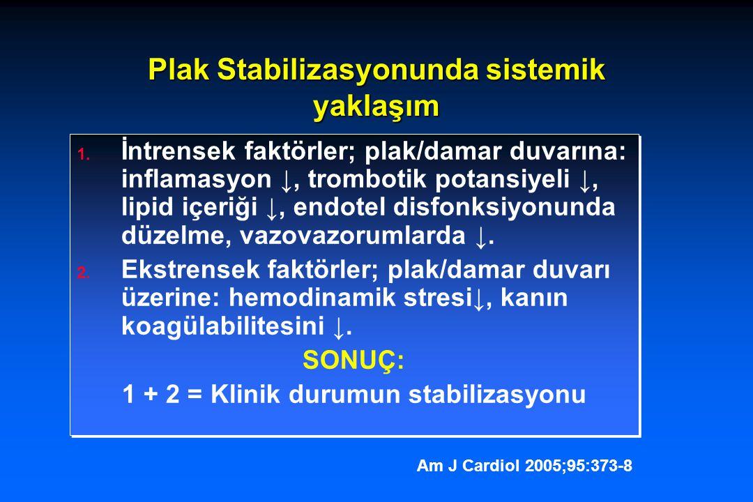 Plak Stabilizasyonunda sistemik yaklaşım