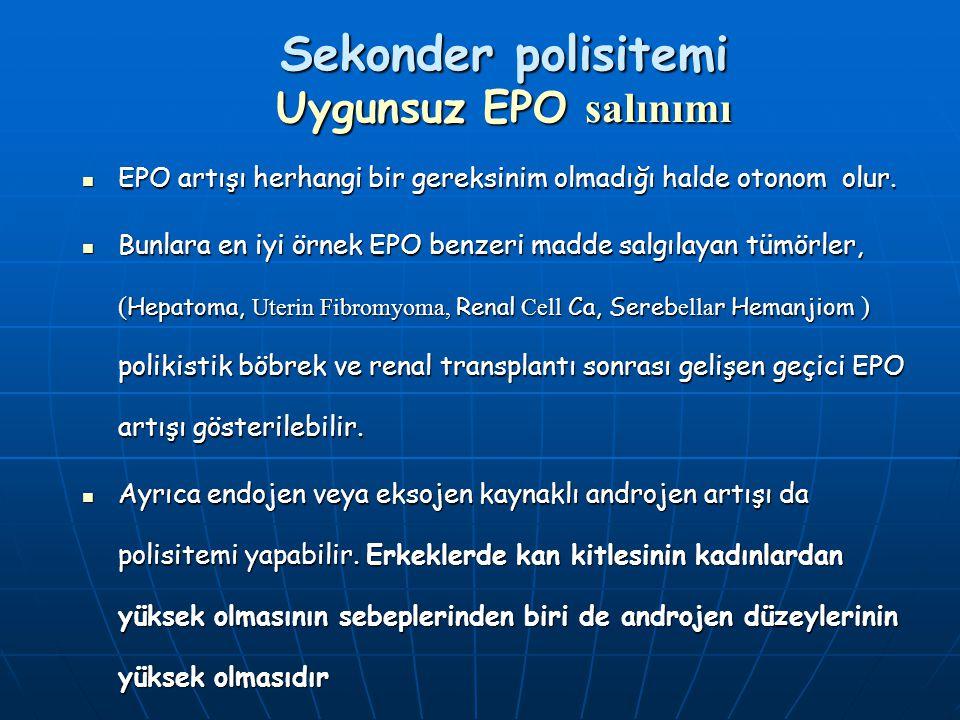 Sekonder polisitemi Uygunsuz EPO salınımı