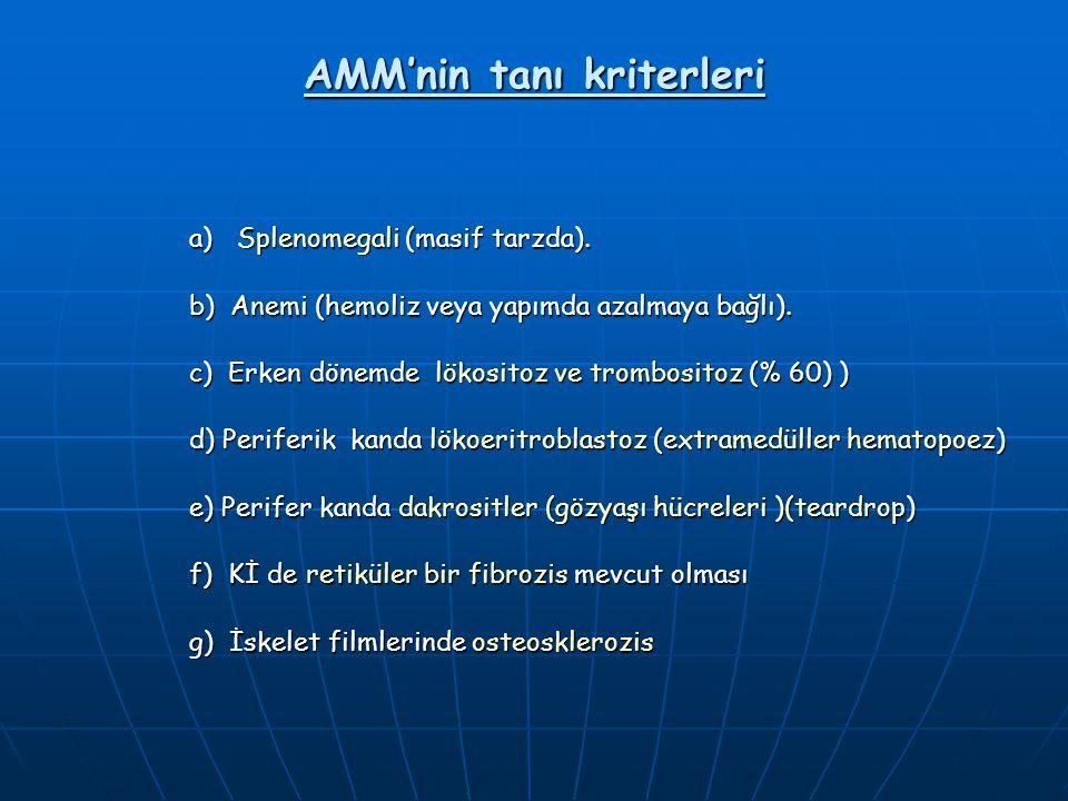 AMM'nin tanı kriterleri