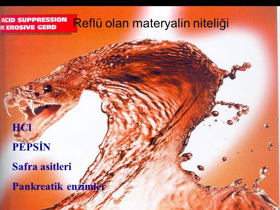 Reflü olan materyalin niteliği