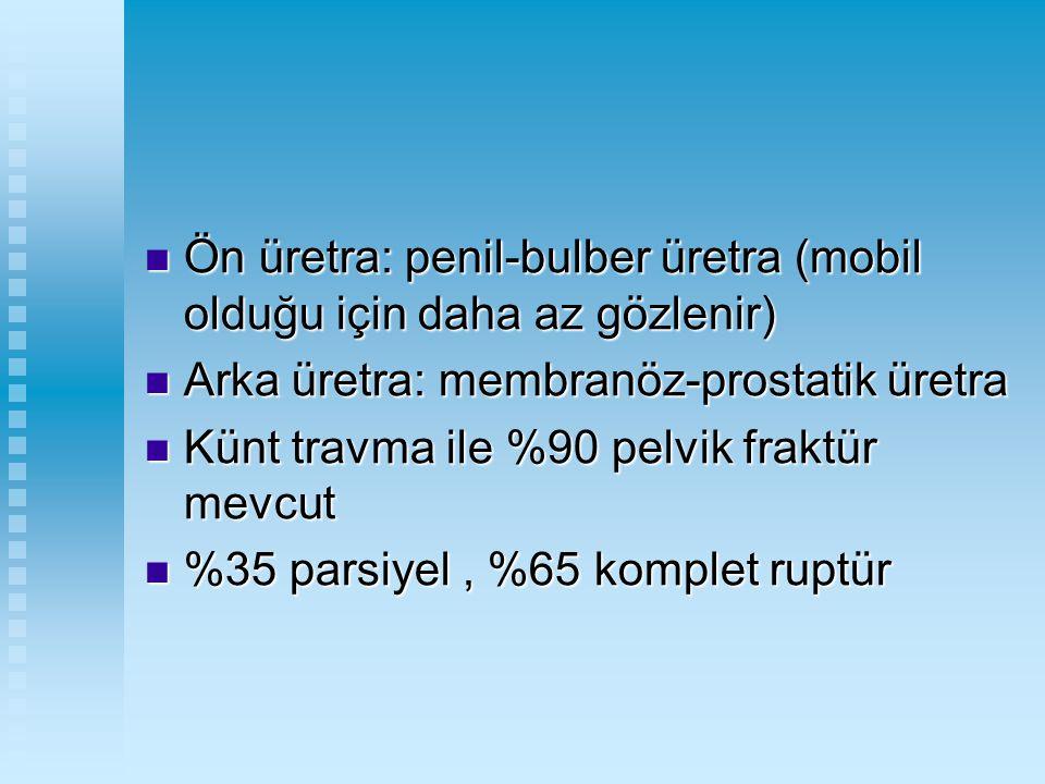 Ön üretra: penil-bulber üretra (mobil olduğu için daha az gözlenir)