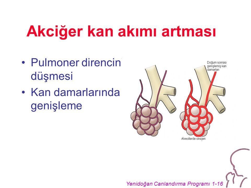 Akciğer kan akımı artması