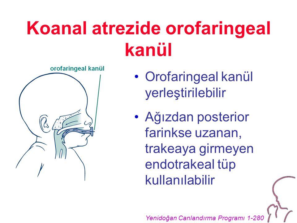 Koanal atrezide orofaringeal kanül