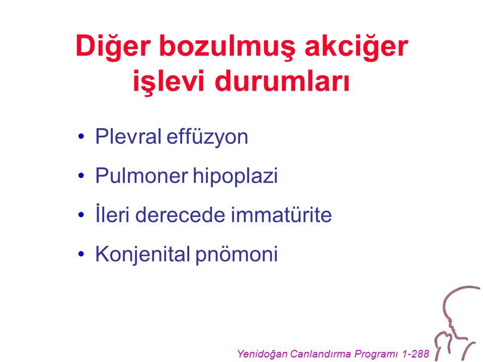 Diğer bozulmuş akciğer işlevi durumları