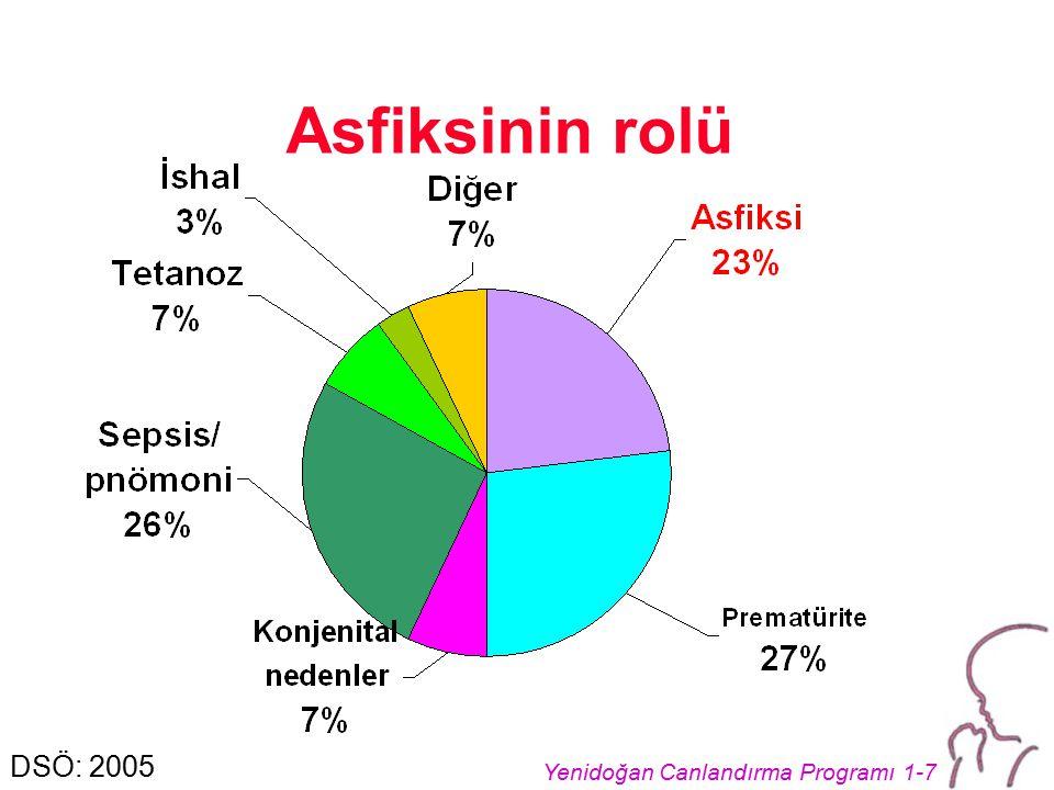 Asfiksinin rolü DSÖ: 2005