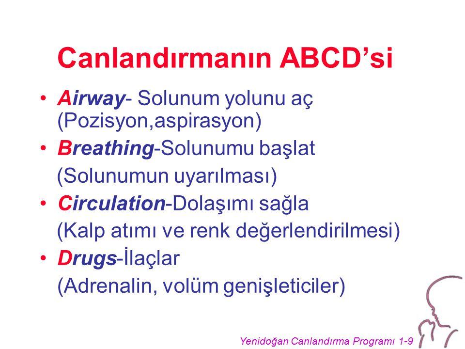 Canlandırmanın ABCD'si