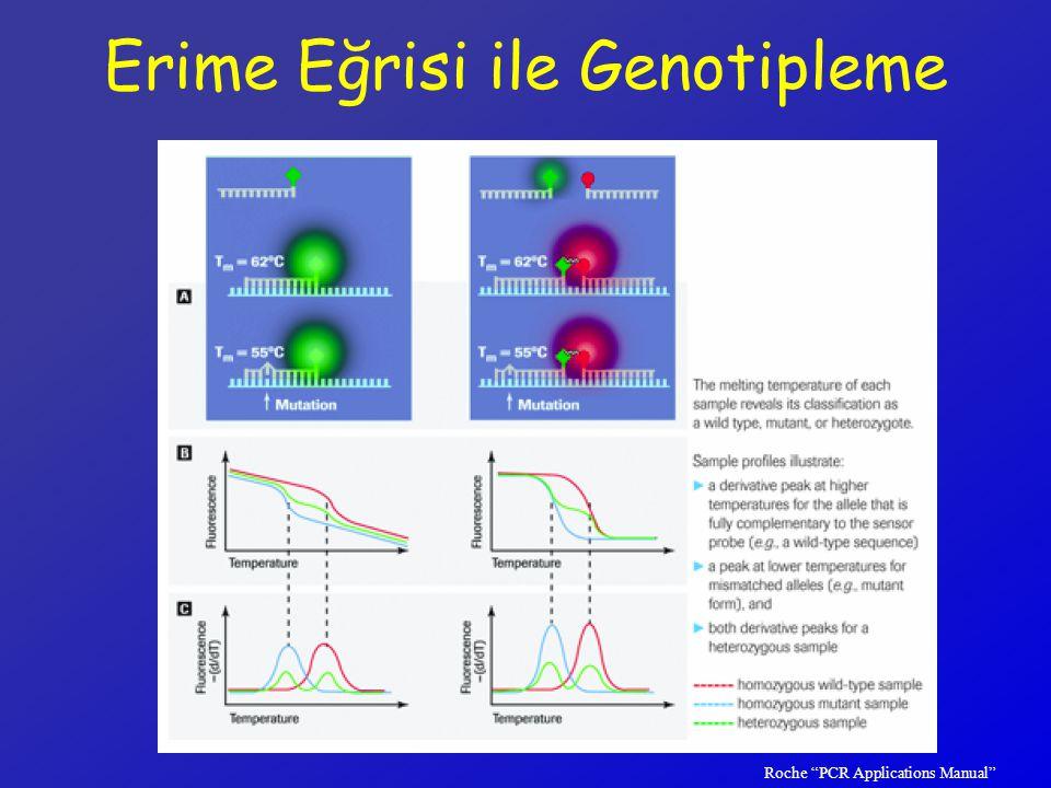 Erime Eğrisi ile Genotipleme