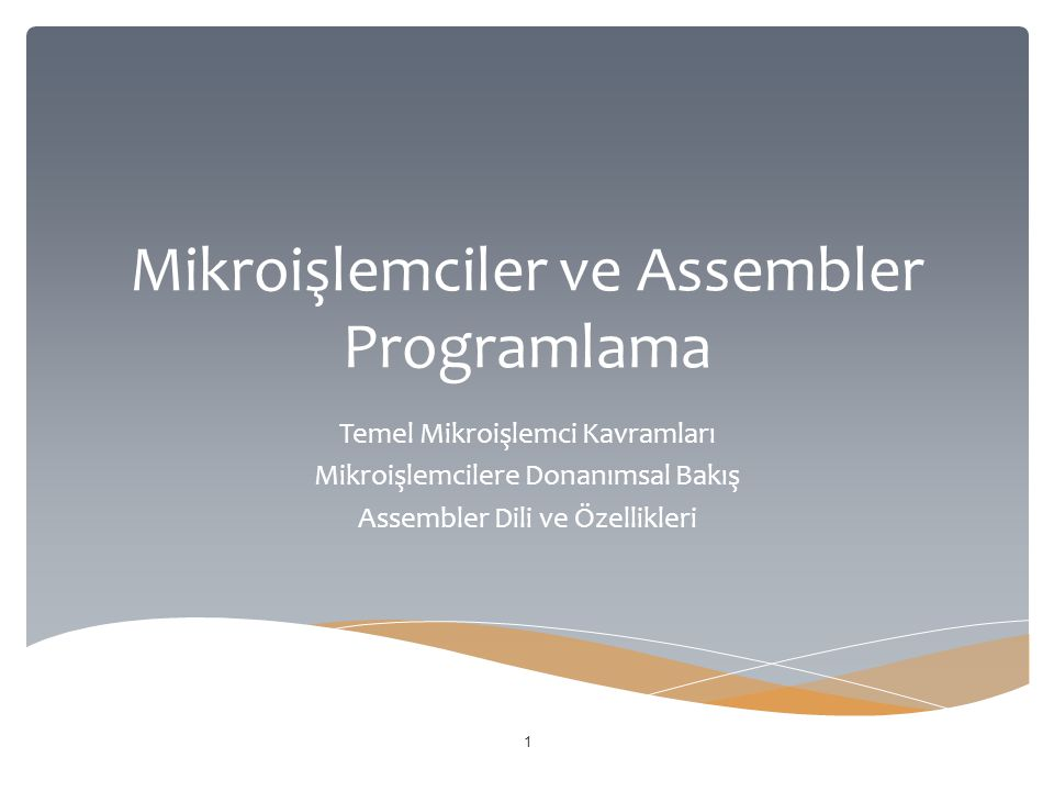 Mikroişlemciler ve Assembler Programlama