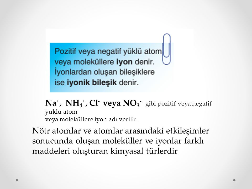 Na+, NH4+, Cl- veya NO3- gibi pozitif veya negatif yüklü atom