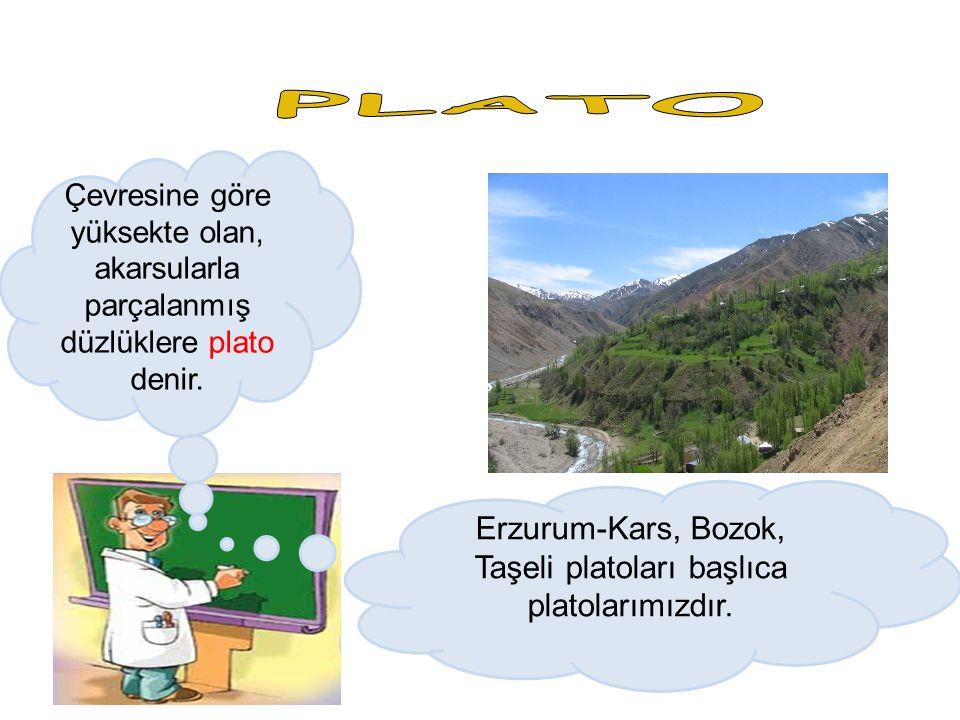 Erzurum-Kars, Bozok, Taşeli platoları başlıca platolarımızdır.