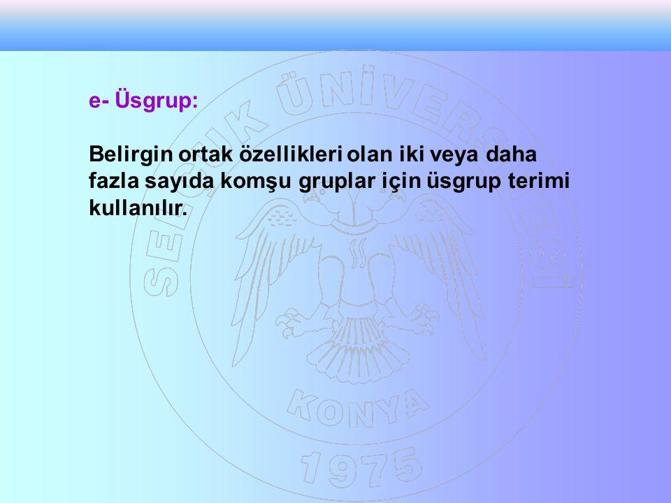 e- Üsgrup: Belirgin ortak özellikleri olan iki veya daha fazla sayıda komşu gruplar için üsgrup terimi kullanılır.