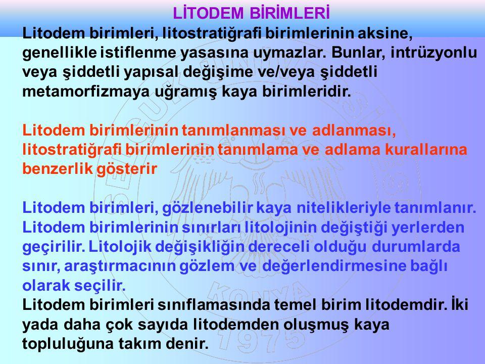 LİTODEM BİRİMLERİ