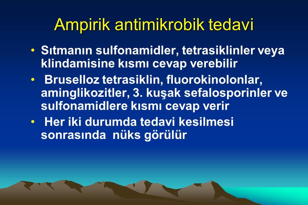 Ampirik antimikrobik tedavi