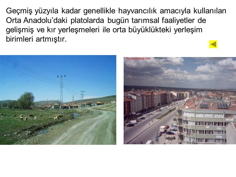 Geçmiş yüzyıla kadar genellikle hayvancılık amacıyla kullanılan Orta Anadolu'daki platolarda bugün tarımsal faaliyetler de gelişmiş ve kır yerleşmeleri ile orta büyüklükteki yerleşim birimleri artmıştır.