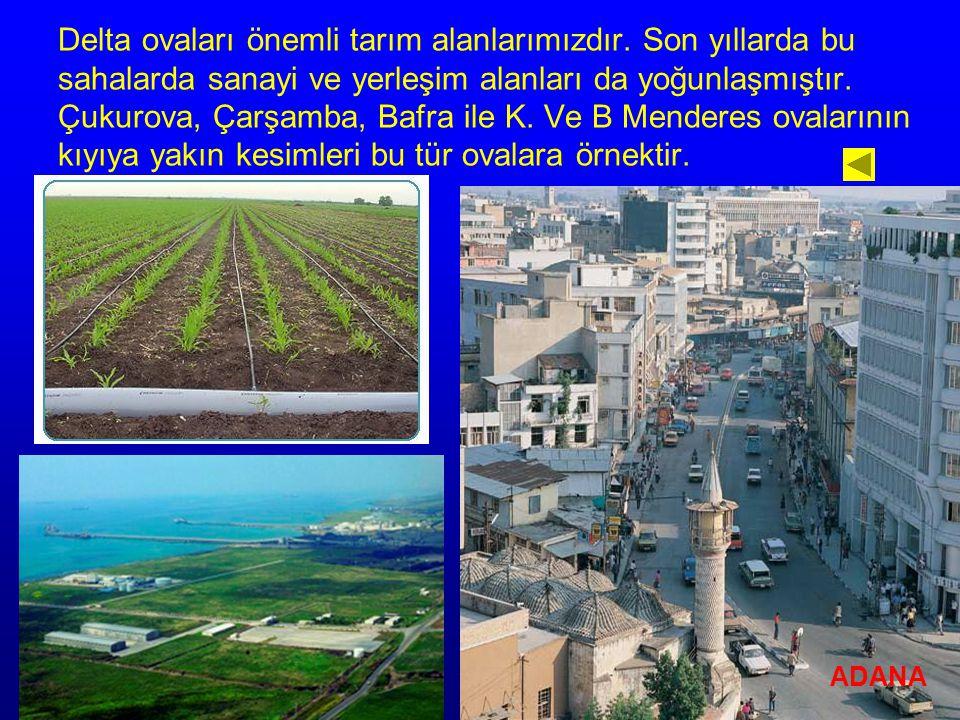 Delta ovaları önemli tarım alanlarımızdır