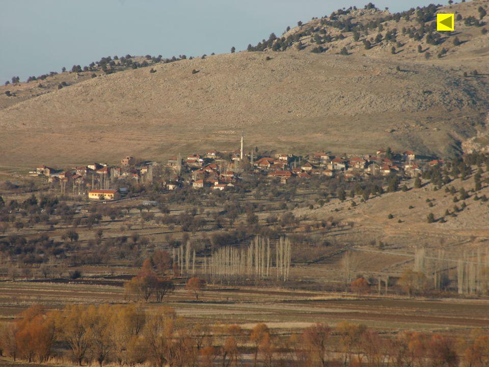 Vadi kenarlarında yer alan Alüvyal ovalarda tarımsal faaliyetler gelişmiş, ova ile dağ arasındaki yamaçlarda yerleşim alanları kurulmuştur.