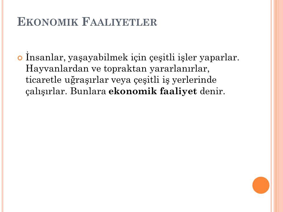 Ekonomik Faaliyetler