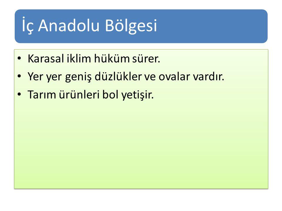 İç Anadolu Bölgesi Karasal iklim hüküm sürer.