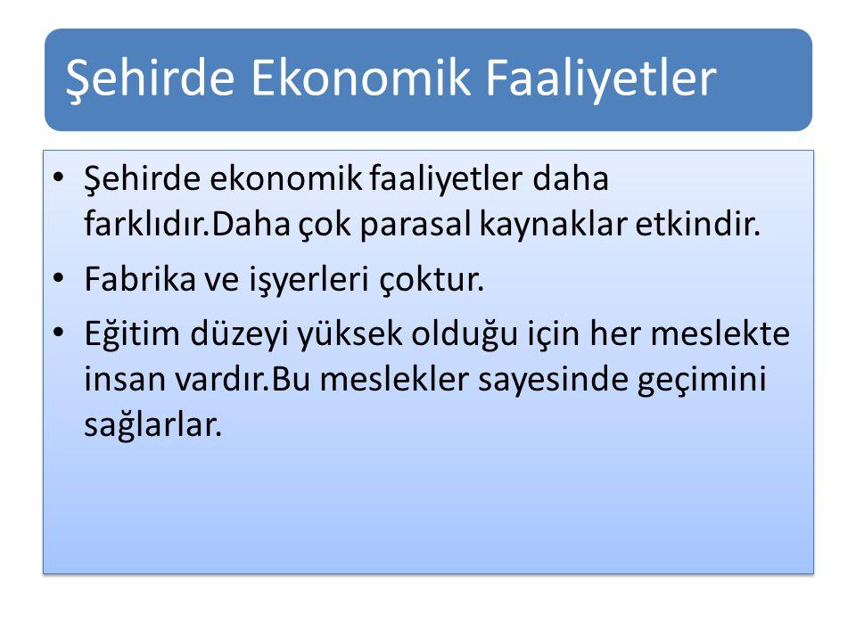 Şehirde Ekonomik Faaliyetler