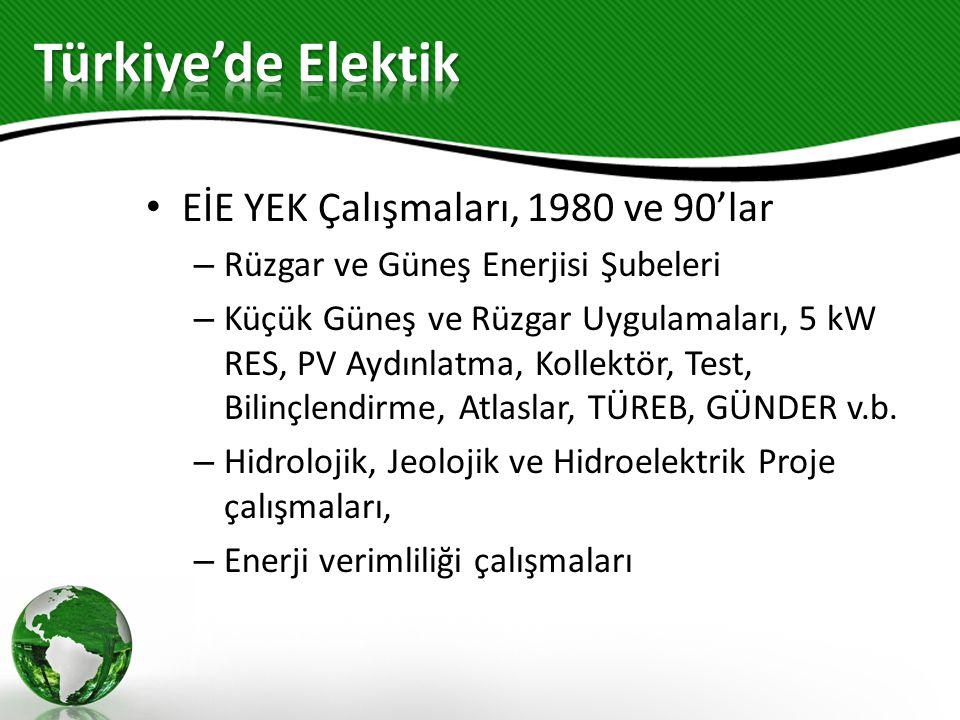 Türkiye'de Elektik EİE YEK Çalışmaları, 1980 ve 90'lar