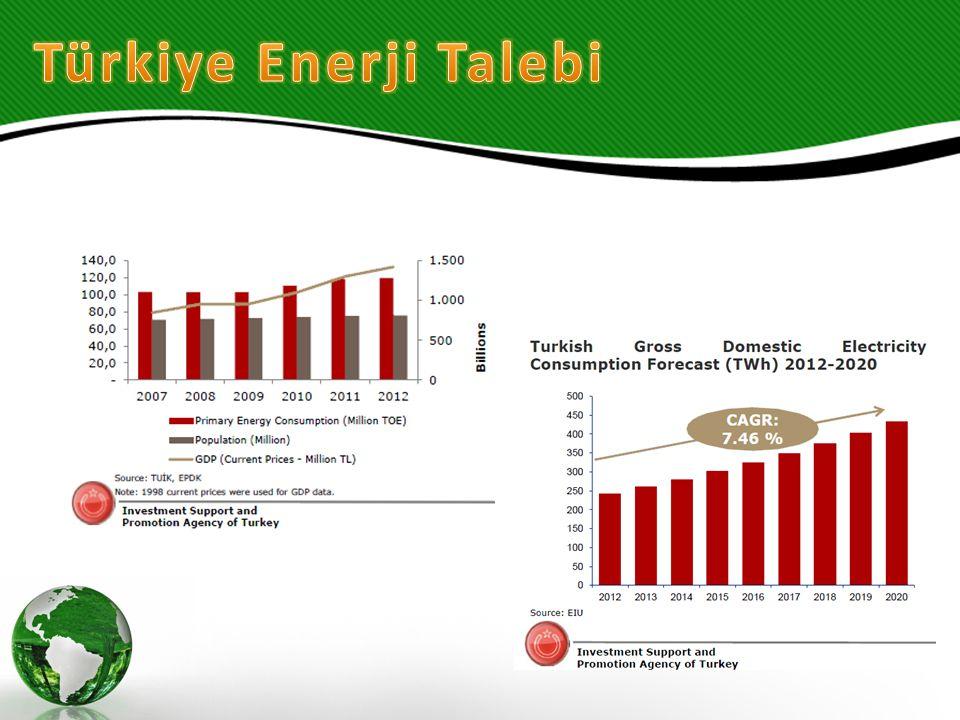 Türkiye Enerji Talebi
