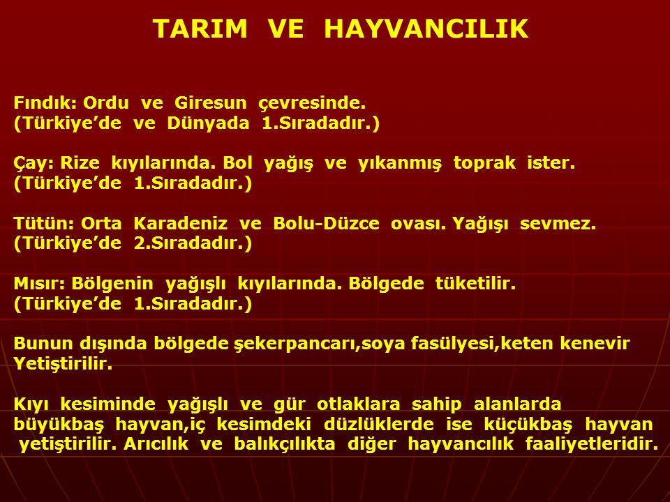 TARIM VE HAYVANCILIK Fındık: Ordu ve Giresun çevresinde. (Türkiye'de ve Dünyada 1.Sıradadır.)