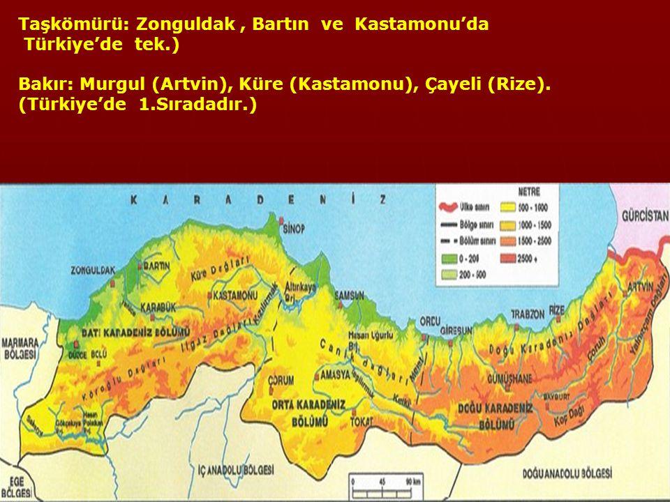 Taşkömürü: Zonguldak , Bartın ve Kastamonu'da