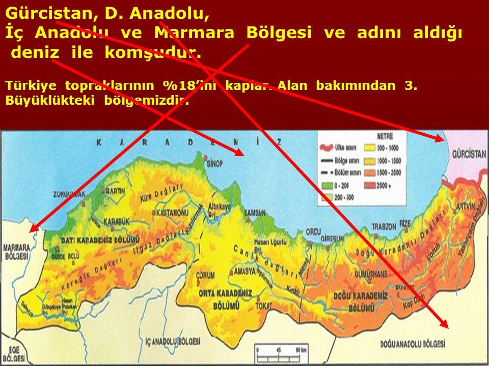 Gürcistan, D. Anadolu, İç Anadolu ve Marmara Bölgesi ve adını aldığı deniz ile komşudur.