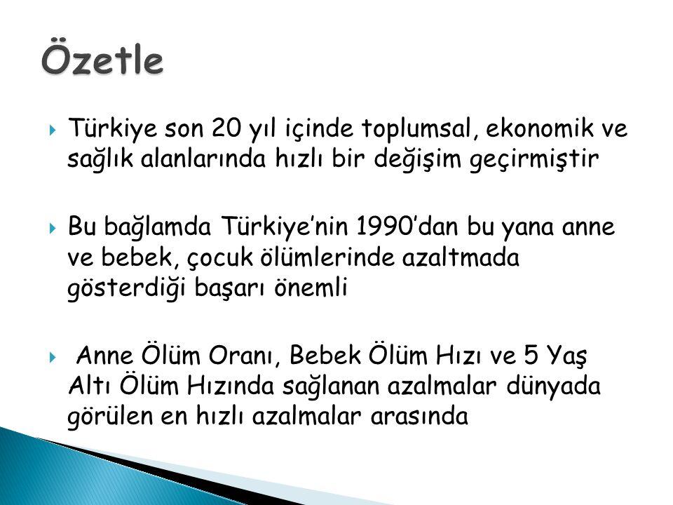 Özetle Türkiye son 20 yıl içinde toplumsal, ekonomik ve sağlık alanlarında hızlı bir değişim geçirmiştir.
