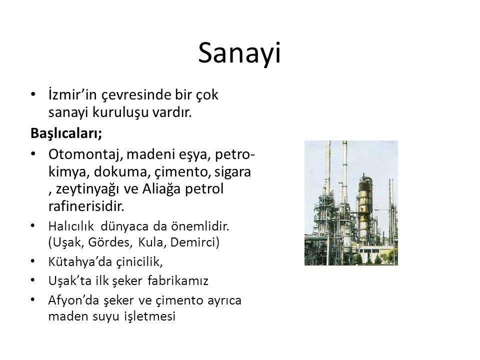 Sanayi İzmir'in çevresinde bir çok sanayi kuruluşu vardır.