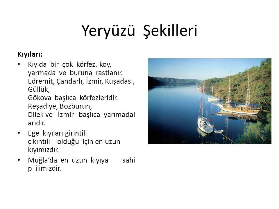 Yeryüzü Şekilleri Kıyıları: