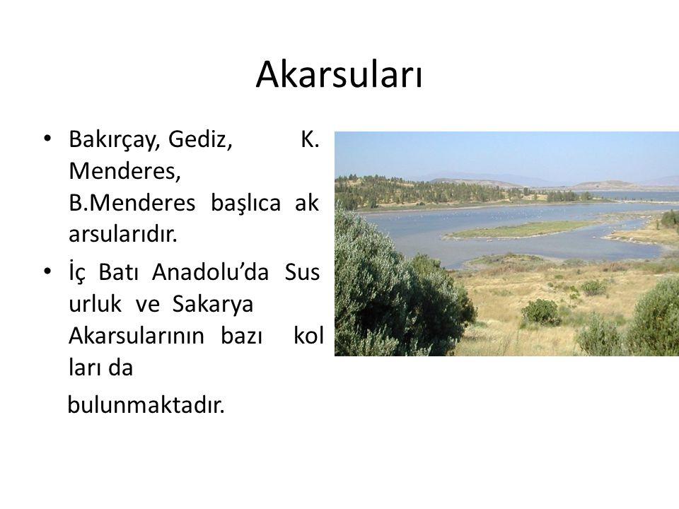 Akarsuları Bakırçay, Gediz, K. Menderes, B.Menderes başlıca akarsularıdır.