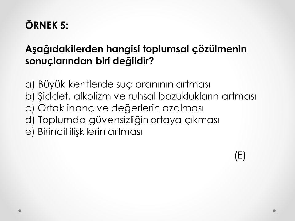ÖRNEK 5: