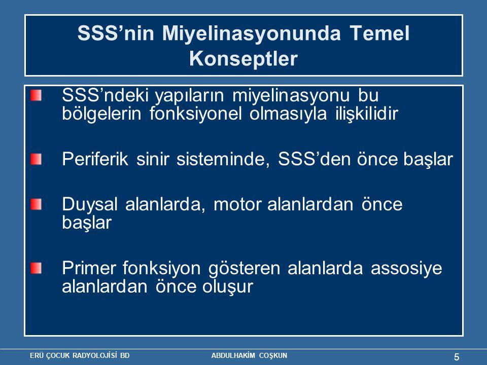 SSS'nin Miyelinasyonunda Temel Konseptler