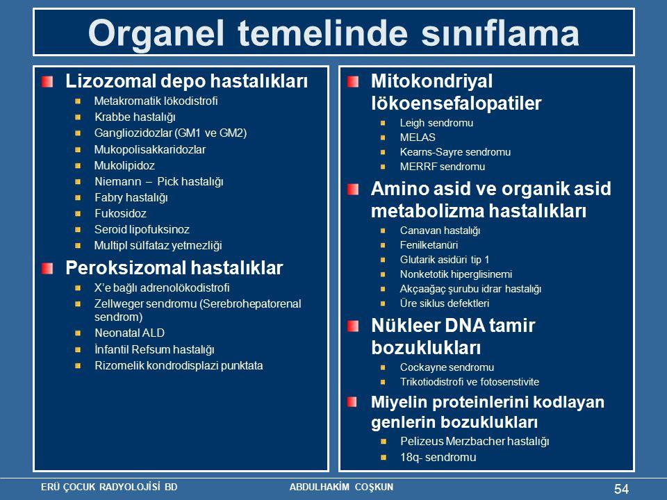 Organel temelinde sınıflama