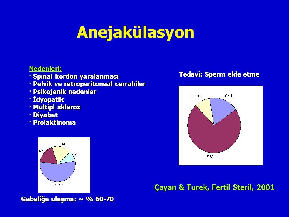 Anejakülasyon Çayan & Turek, Fertil Steril, 2001 Nedenleri: